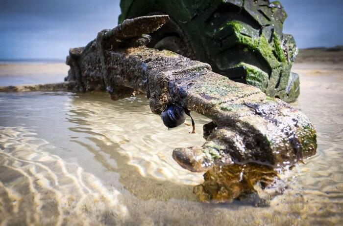 Старий Land Rover Defender, який затонув 30 років тому, показався з піску (ФОТО)